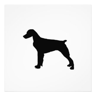 Brittany Spaniel sporting hunting dog Silhouette Photographic Print