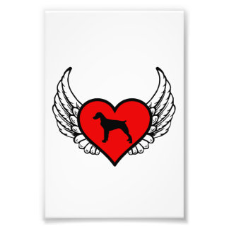 Brittany Spaniel Winged Heart Love Dogs Silhouette Art Photo