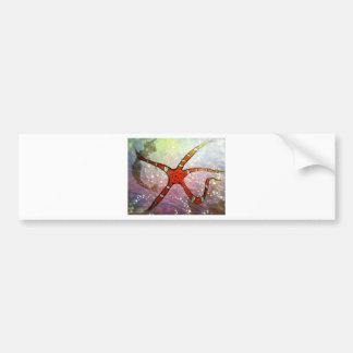 Brittle Star Bumper Stickers
