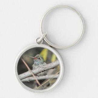 Broad-billed Hummingbird Keychain