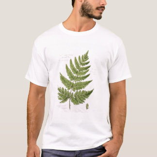 Broad Prickly-toothed Buckler Fern, painted at Bra T-Shirt