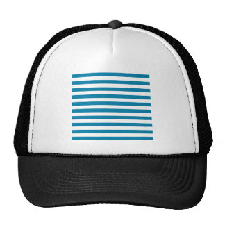 Broad Stripes - White and Cerulean Trucker Hat