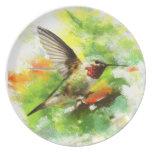 Broadtail Hummingbird Plate