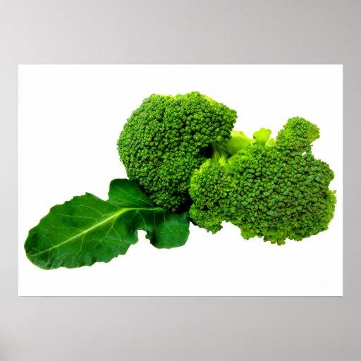"""Broccoli 28"""" x 20"""", Value Poster Paper (Matte)"""