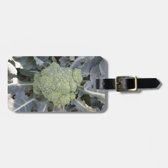 Broccoli Custom Luggage Tag