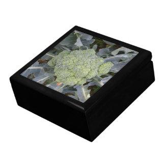 Broccoli Gift Box
