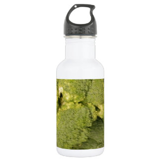 Broccoli 532 Ml Water Bottle