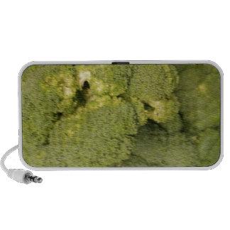 Broccoli Speakers