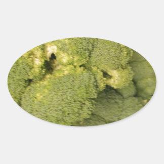 Broccoli Oval Stickers