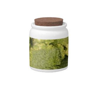 Broccoli Candy Jar
