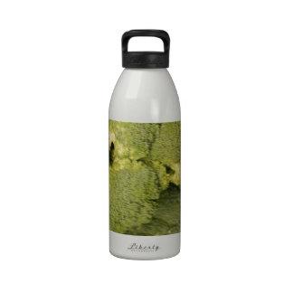 Broccoli Reusable Water Bottles