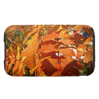 BROL Bright Orange Leaves Tough iPhone 3 Covers