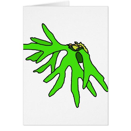 Bromeliad Card