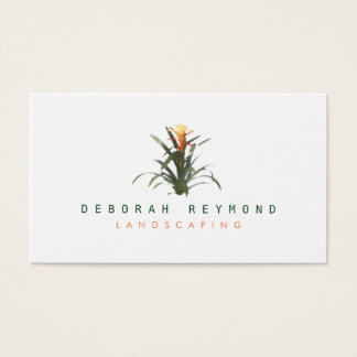 bromeliad plant . landscaping simple white business card