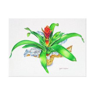 Bromeliad Watercolor Canvas Print