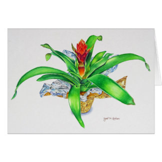 Bromeliad Watercolor Card