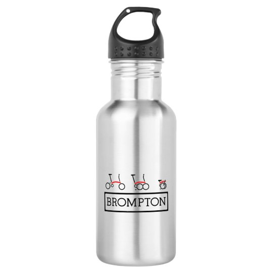 Brompton Water Bottle (18 oz), Silver