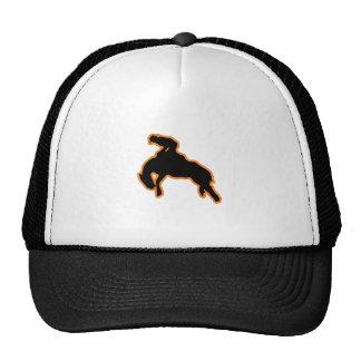 BRONC RIDER CAP