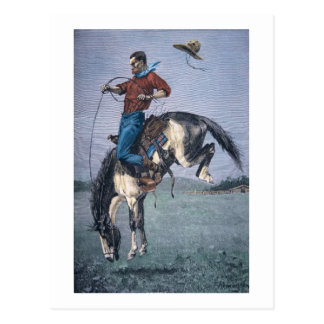 Bronco-Buster (coloured engraving) Postcard