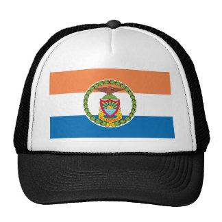 Bronx Borough Flag Cap
