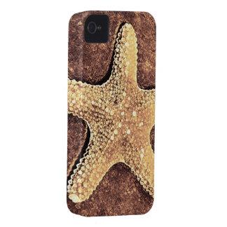 Bronze Starfish iPhone 4 Case