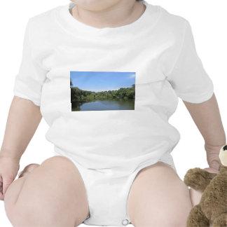 Brook over the bridge t-shirts