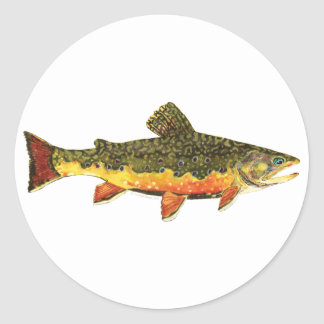 Brook Trout Fish Painting Stickers