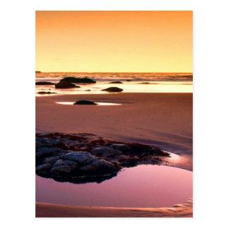 Brookings Harbor Sunset Fine Photo Postcard