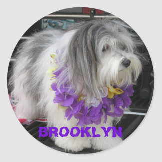 BROOKLYN PURPLE HAWAII STICKERS