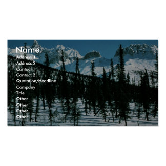 Brooks Range in Winter Business Card Templates
