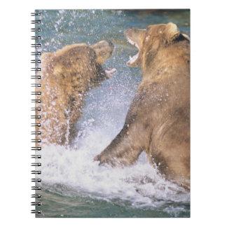 Brooks River, Katmai National Park, Alaska.  Two Notebook