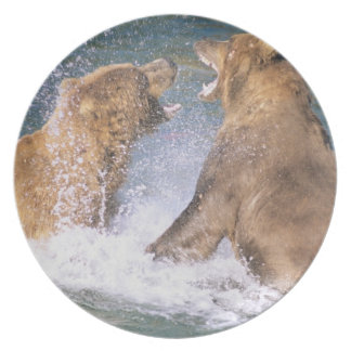 Brooks River, Katmai National Park, Alaska.  Two Plates