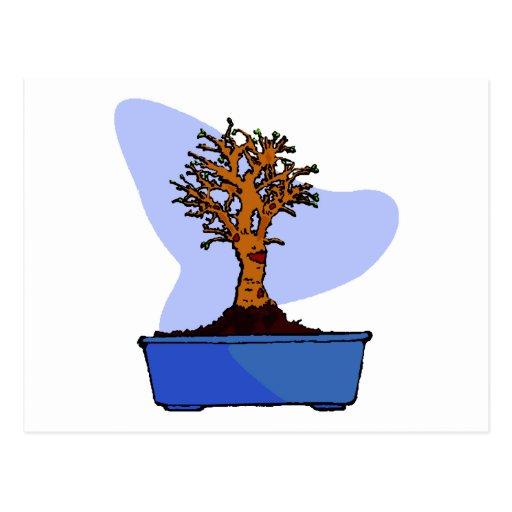 Broom Bonsai Trimmed Blue Pot Graphic Image Post Card