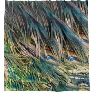 Broom Peacock Feathers Blue Eyes Shower Curtain