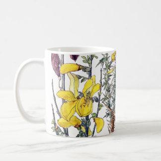 Broom Wildflower Flowers Meadow Mug