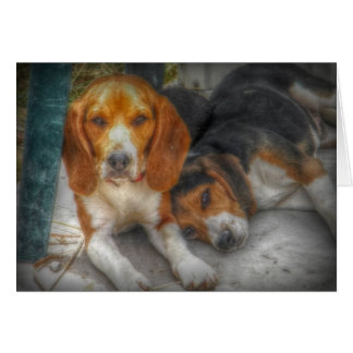 Brother Beagles Greeting Card