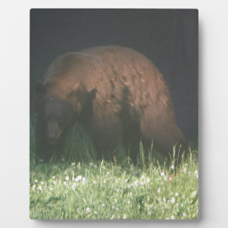 Brother Bear Photo Plaques