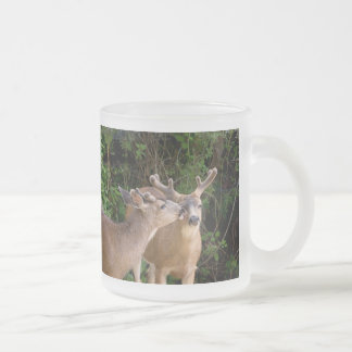 Brotherly Love Deer Bucks Frosted Glass Mug