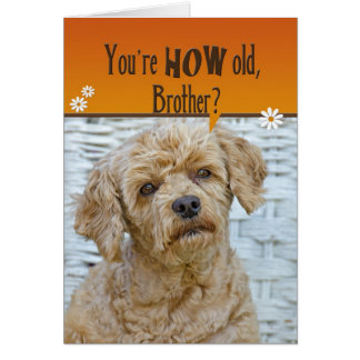 Brother's Birthday Card