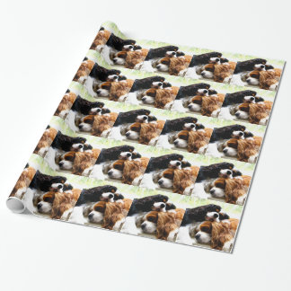 Brothers Cavaliers Wrapping Paper