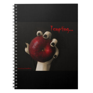 Brothers Grimm Tempting Witch Spiral Notebook