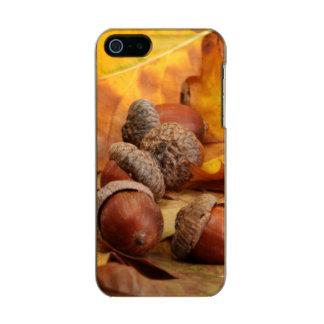 Brown Acorns On Autumn Leaves, Close Up Incipio Feather® Shine iPhone 5 Case