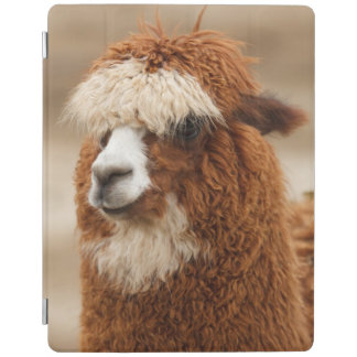 Brown Alpaca custom monogram device covers iPad Cover