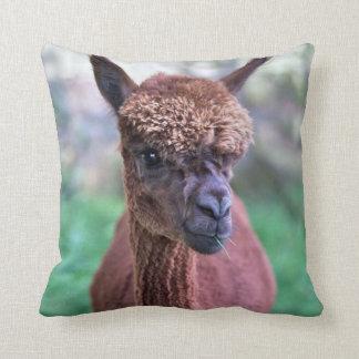 Brown Alpaca Pillow