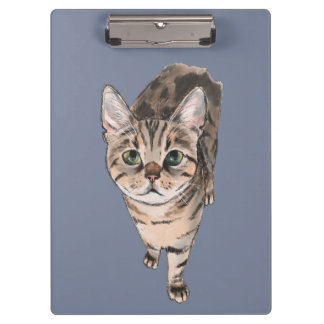 Brown American Shorthair Kitty Clipboards