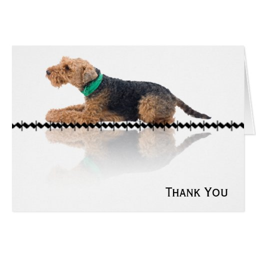 Brown and Black Welsh Terrier Note Card