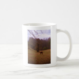 Brown and Blond Horse in a field Coffee Mugs