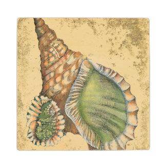 Brown and Green Seashell Wood Coaster