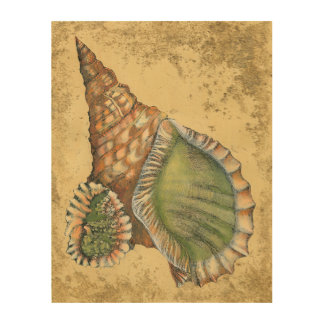 Brown and Green Seashell Wood Wall Art
