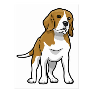 Brown and White Beagle Postcard